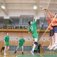 Соревнования по волейболу 2016 8 :: Людмила Мозер