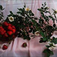 Весенний этюд :: Нина Корешкова