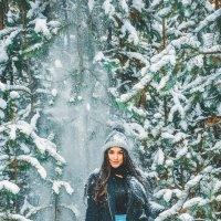 зимушка :: Екатерина Смирнова