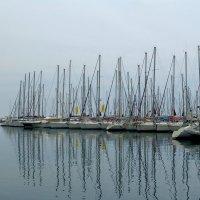 Зеркало на море. :: Оля Богданович