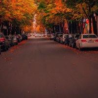 осень :: Коля Нефедов