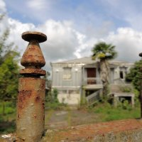 Где-то в Абхазии :: Елена Ом