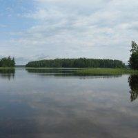 Озеро Селигер. Остров Бежачий. :: Татьяна