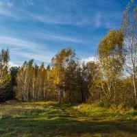 Осень :: ALEXANDR L