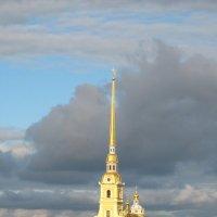 Северный ветер :: Алексей Гришанков (Alegri)