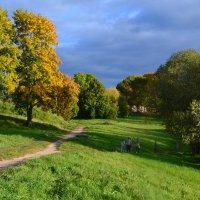 Прогулка с осенью. :: zoja