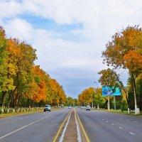 Панорама осени :: Светлана