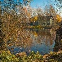 Октябрь на Угольном острове 3 :: Виталий