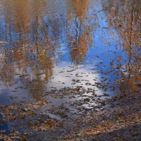 Падают, падают листья :: Татьяна Ломтева