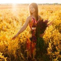 Желтое лето :: Ирина Сычева