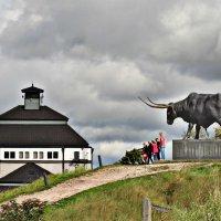 Памятник быку в Раквере,Эстония :: Marina Pavlova