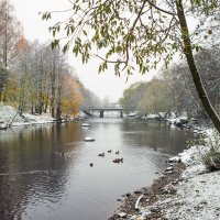 Снег в октябре 2 :: Виталий