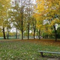 Я на счастье подарю вам осень... :: Galina Dzubina