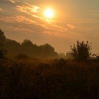 Рассвет подкрался нежный, вливаясь в тишину... :: Ольга Русанова (olg-rusanowa2010)