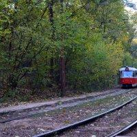 Трамвай из Пущи :: Ростислав