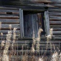 Осень в деревне :: Валерий Талашов