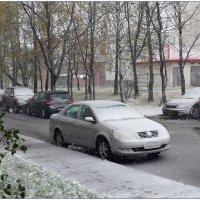 Первый снег. :: Роланд Дубровский