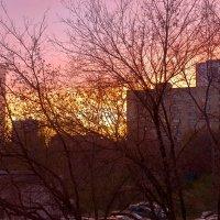 Осенний рассвет в Хорошево :: Александр Лебедевъ