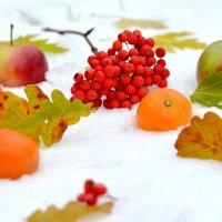 Композиция осень-зима :: Марина Романова
