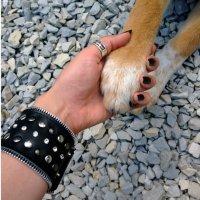 Самое любимое рукопожатие. :: Chrisstern Lynnik