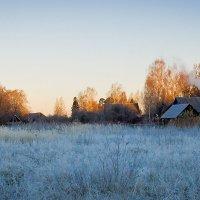 утро в деревне :: Роман никандров