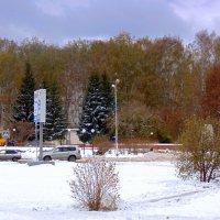 Почти зима. :: Мила Бовкун
