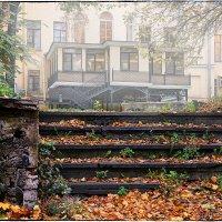 My magic Petersburg_02245 :: Станислав Лебединский