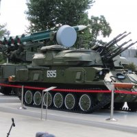 Грозное оружие :: Дмитрий Никитин