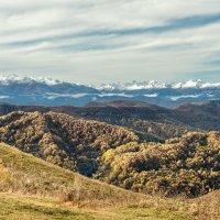 Осень на перевале Гум-Баши :: anatoly Gaponenko
