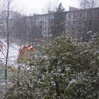 Первый снег-2 :: Александр Петров
