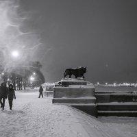 Ночная жизнь :: Татьяна Курамшина