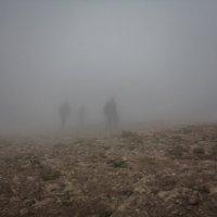 В тумане :: Екатерина Никифорова