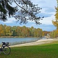 Изменчива погода в октябре…... :: Galina Dzubina