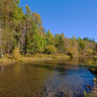 Плавное течение реки :: Анатолий Иргл