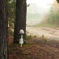 В тумане и не такое встретишь! ))) :: Подъяков Анатолий