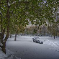 Неожиданная зима. :: Александр Гурьянов