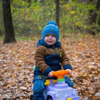 В осеннем лесу. :: Геннадий