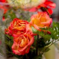 Потрясающие розы.. розы.. :: Ирина Кузина