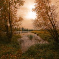 Обуяла осень золотая 4 :: Сергей Жуков