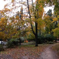листва окрасилась под осень... :: Людмила