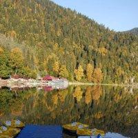 Озеро Рица :: Нелли *