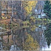 осень на Яснушке :: Natalia Mihailova