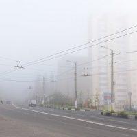 Дорога в тумане 2 :: Станислав Пересыпкин