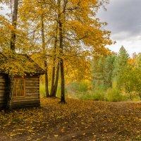 Осень на Снежети :: Лариса Березуцкая