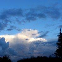 Облако похожее на собаку... :: Ольга Мореходова