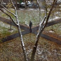 Первый снег :: Константин Фролов