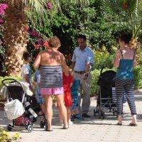 Большая семейка, или Подскажите, дядя, как на пляж пройти?.. :: Михаил Битёв