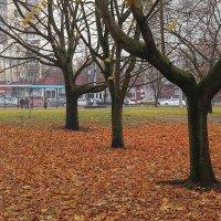 Городской пейзаж... :: Александр Манько