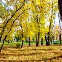 Парк 3 :: Вячеслав Баширов