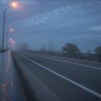 В туманный осенний восход у трассы М-7 (Суздальский район) :: Igor Andreev